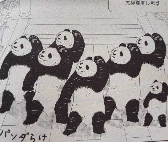 パンダの太極拳