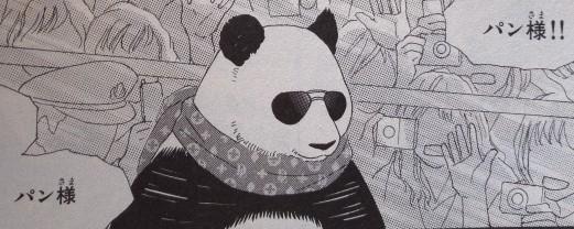 パンダ様(ヨン様パロディ)
