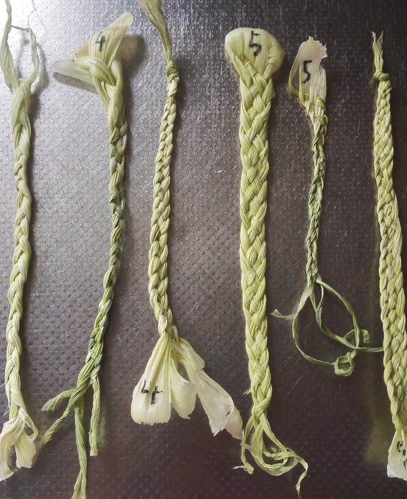 とうもろこしの皮で四つ編み方練習